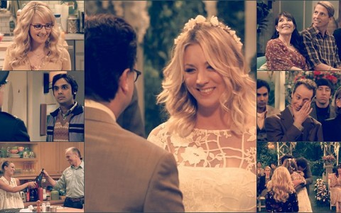 tbbt_10x01-the-conjugal-conjecture-bbb